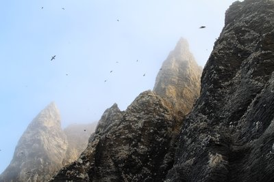 Towering spires and cliffs host giant rookeries on Cape Thompson.
