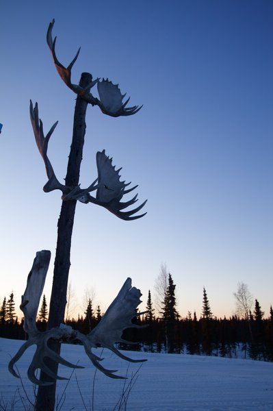 A moose antler sign welcomes visitors in the village of Nikolai.