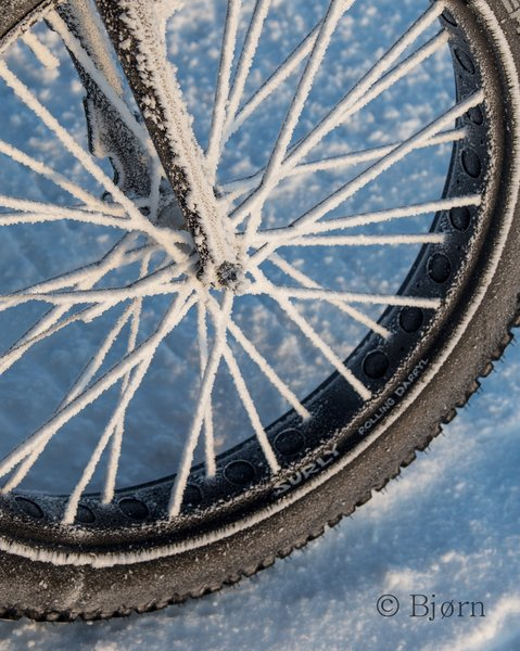 Rime ice coats the spokes on Kim's wheel.