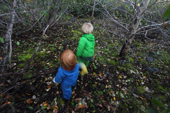 Image result for kids in the woods