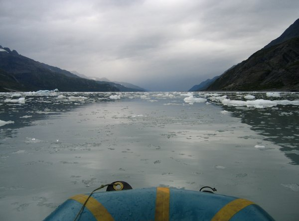 "Once a <a href=""http://www.groundtruthtrekking.org/Issues/ClimateChange/GlacierRetreatInAlaska.html"">glacier that stretched far down the fjord</a> McCarty glacier has retreated many miles since it was first mapped."