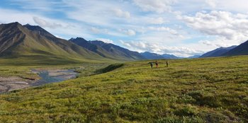 The Oolah valleys, in the Brooks Range, has generally more mountainous than the terrain over Alaska's identified North Slope - but it shares the same open tundra vegetation.