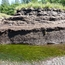 Peat outcrop