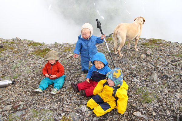 At the end of July 2010, ten adults, four babies, and six dogs walked from Red. Mt. to Seldovia.  These photos are from this improbable journey.