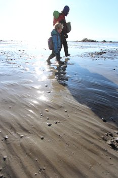 Fine mud streaked by tidal currents covers gravel.
